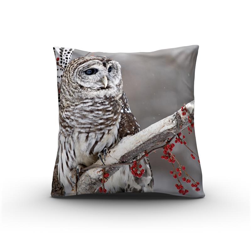 Nightlife Sierkussen Winter Owl