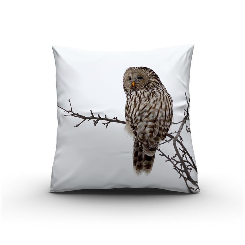 Nightlife Sierkussen Owl