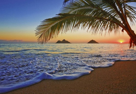 Wizzard and Genius Fotobehang Pacific Sunrise