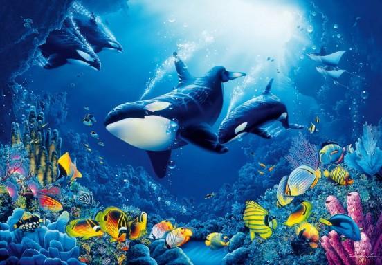 Wizzard and Genius Fotobehang Orcas in the Sea