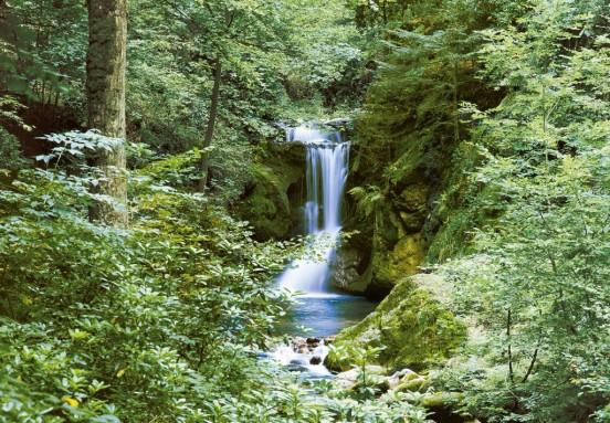 Wizzard and Genius Fotobehang Waterfall Spring