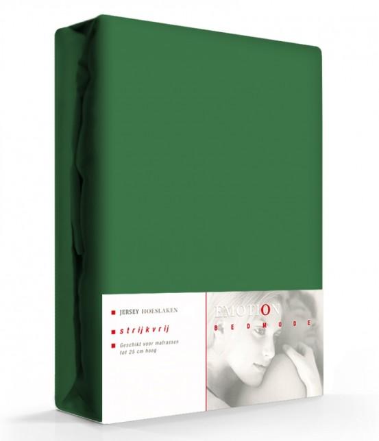 Emotion Jersey Hoeslaken Groen