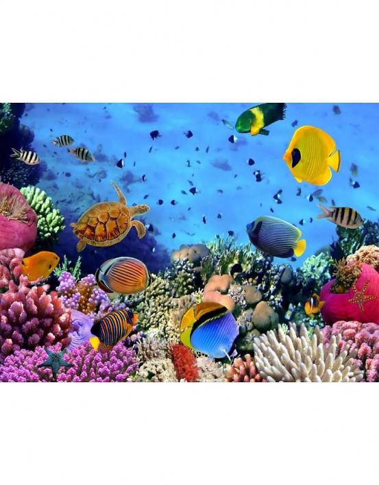 Fotobehang Onder De Zee 232 cm x 315 cm