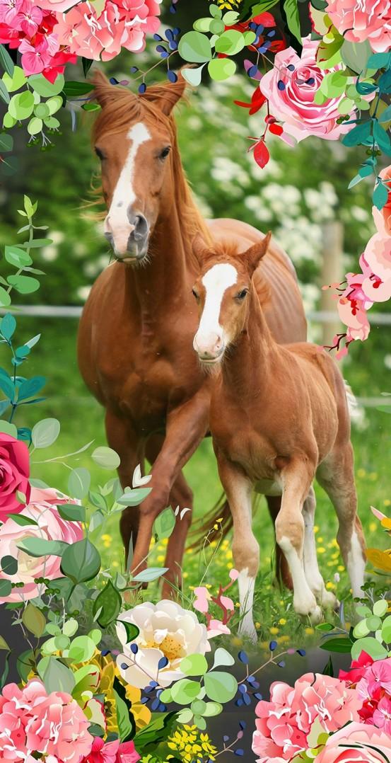 Good Morning Kids Strandlaken Foal