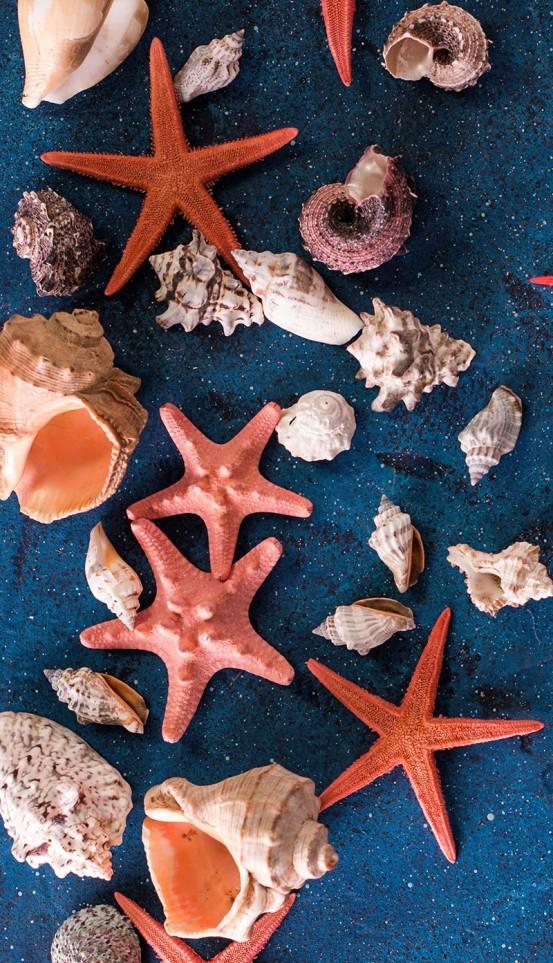 Good Morning Strandlaken Sea Star