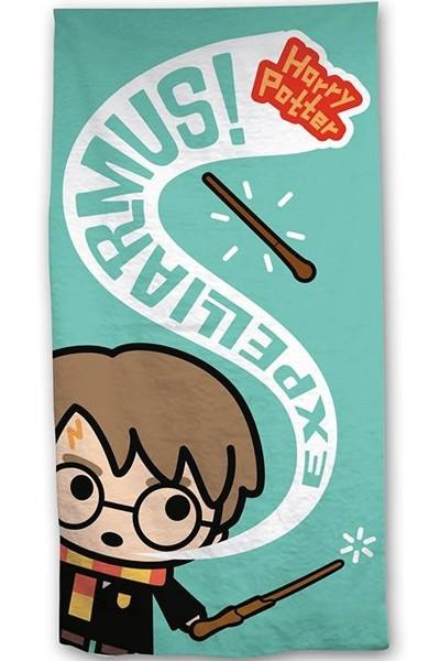 Harry Potter Expelliarmus Strandlaken 70 x 140 cm