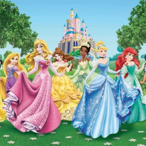 Disney Princesses Castle Fotobehang 4D (AG Design)