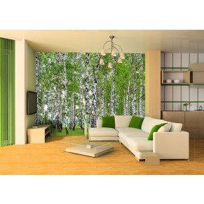 Berry Birch Fotobehang 4D (AG Design)