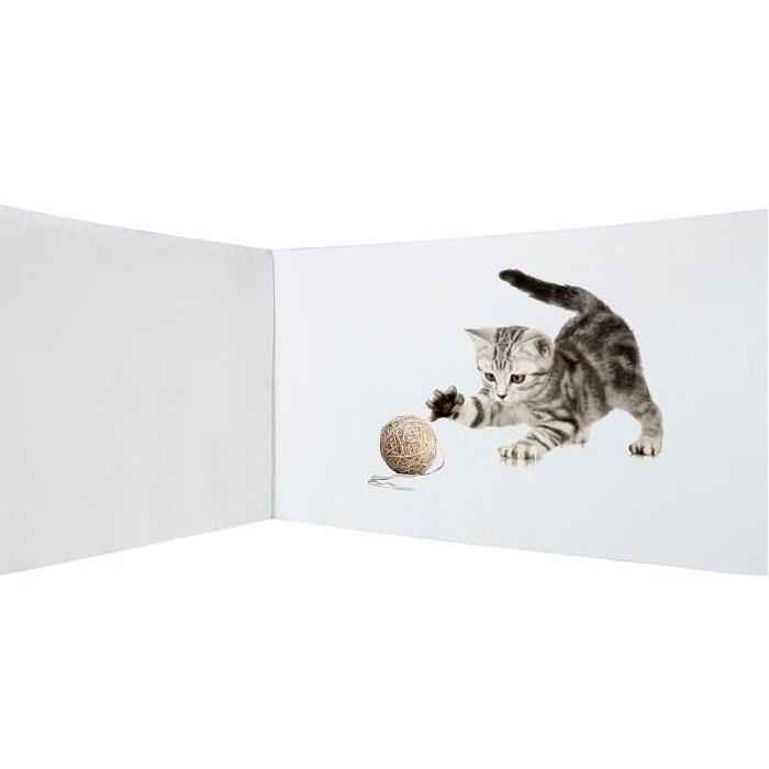Hoofdbeschermer Luna de Kat